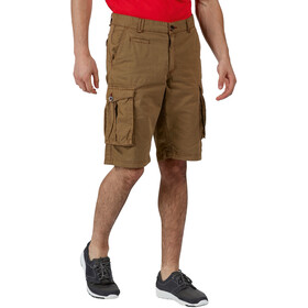 Regatta Shorebay Shorts Men dark camel
